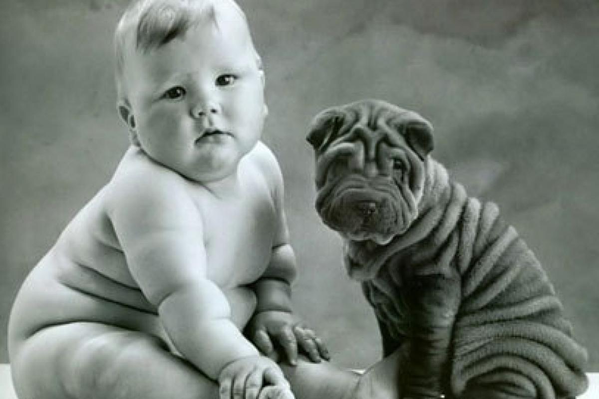 Πώς να προετοιμάσετε το ζωάκι σας για τον ερχομό του μωρού!