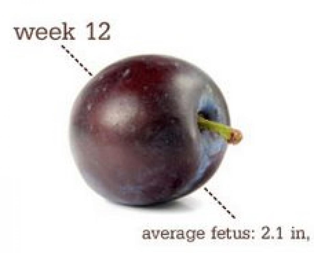 12 εβδομάδων: Δερματικά και άλλα