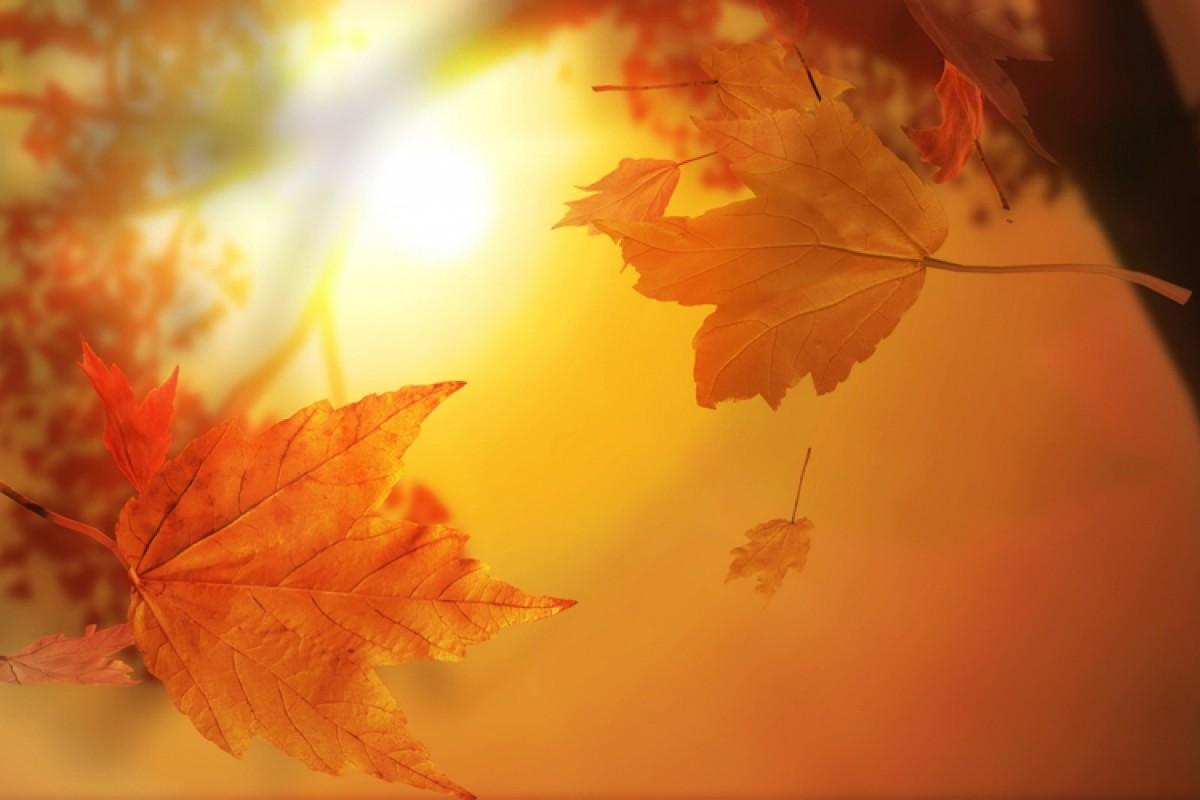 Τι μου αρέσει στο φθινόπωρο
