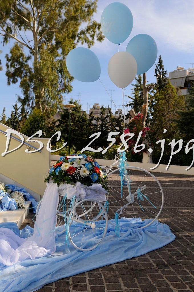 DSC_2586