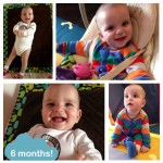 arxe6months