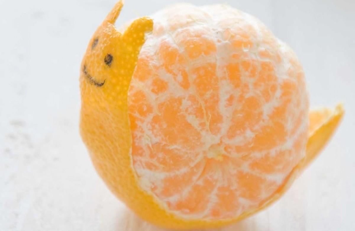 Τα φρούτα έγιναν… ζωάκια!