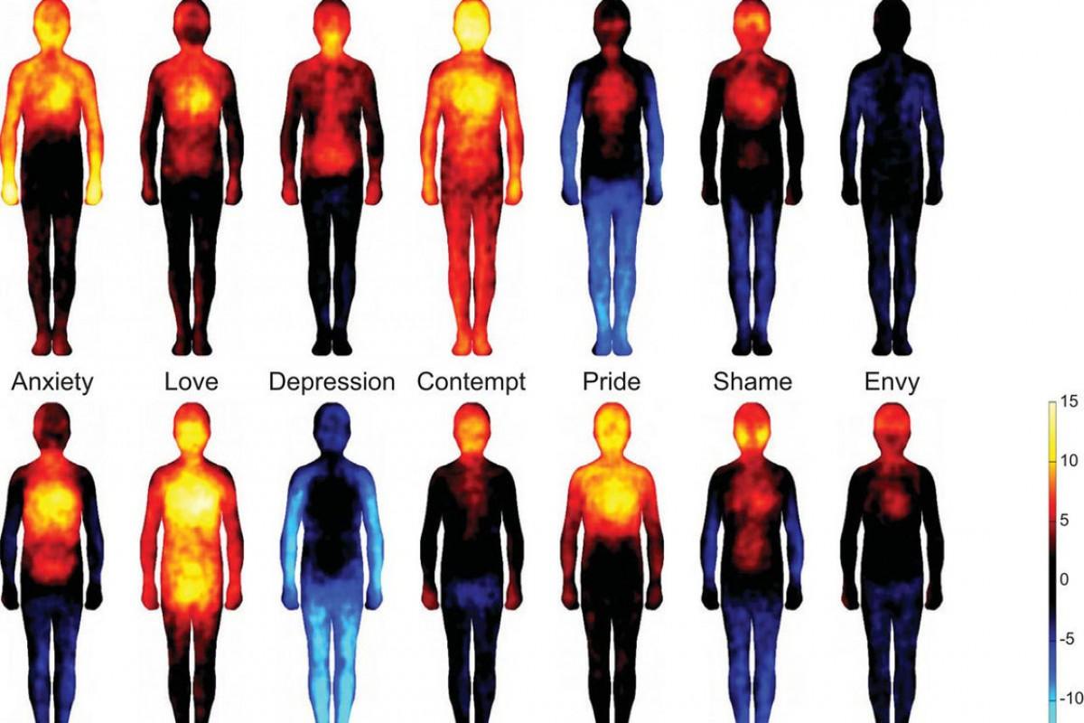 Πού νιώθετε την αγάπη; Οι επιστήμονες χαρτογραφούν τα συναισθήματά μας