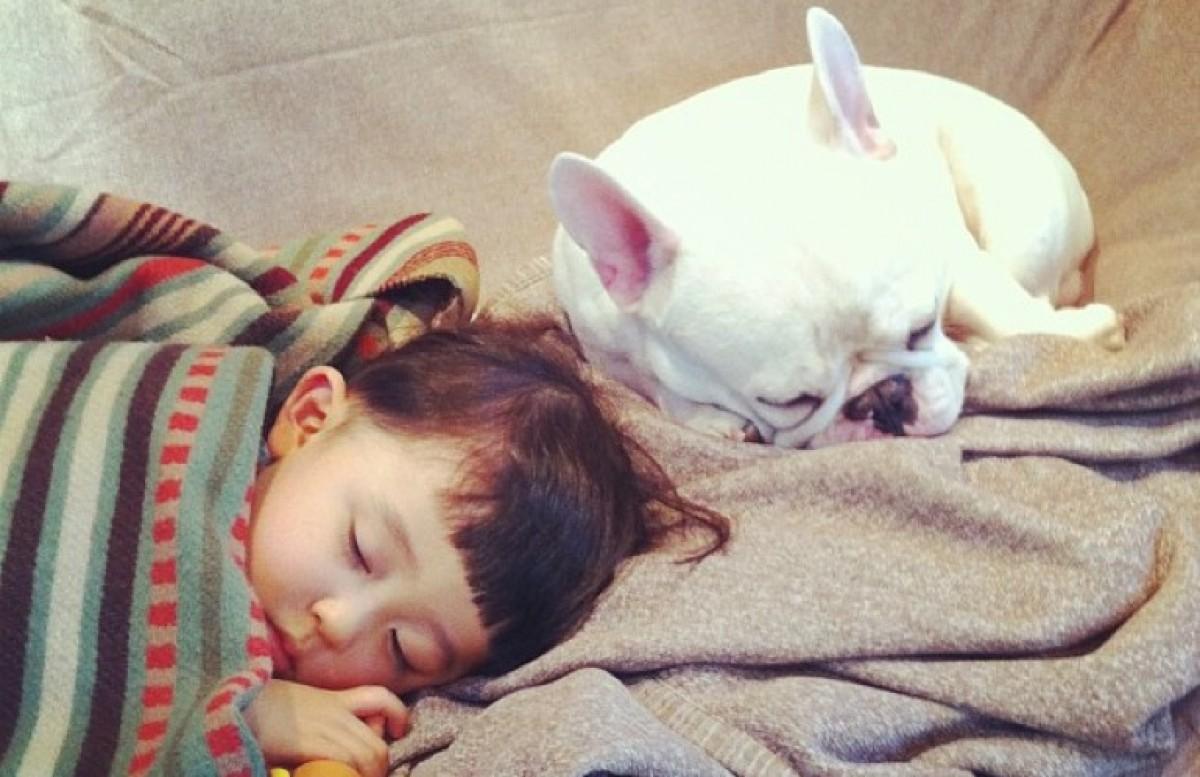 Οι απίστευτες φωτογραφίες ενός αγοριού με το σκυλάκι του!