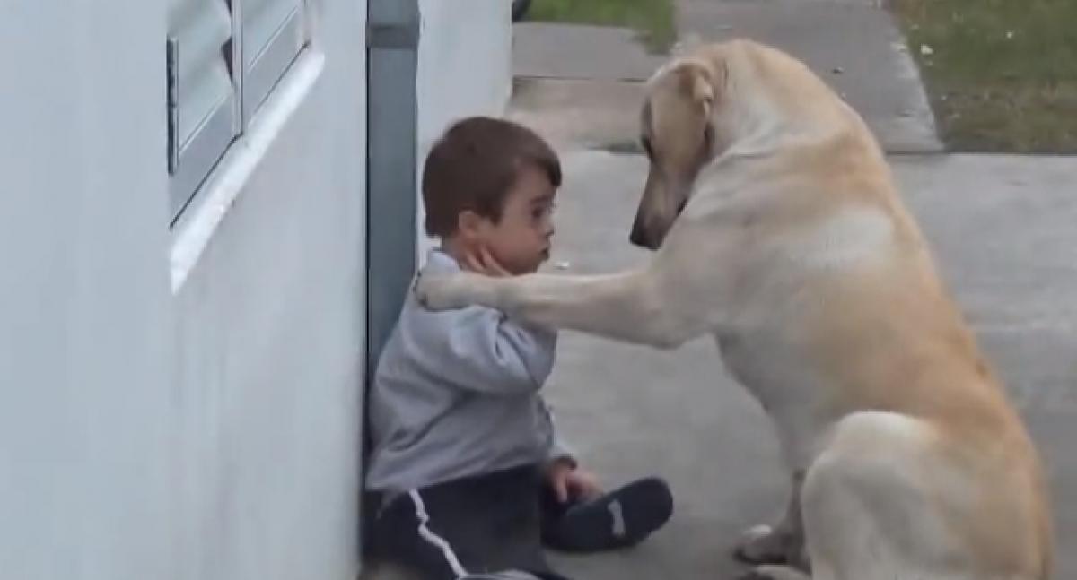 Το πιο γλυκό βίντεο που θα δείτε σήμερα