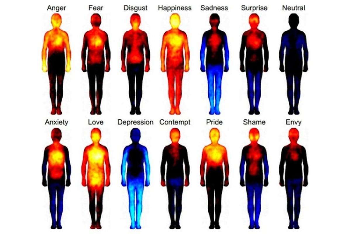 Πώς μοιάζουν τα… συναισθήματα;