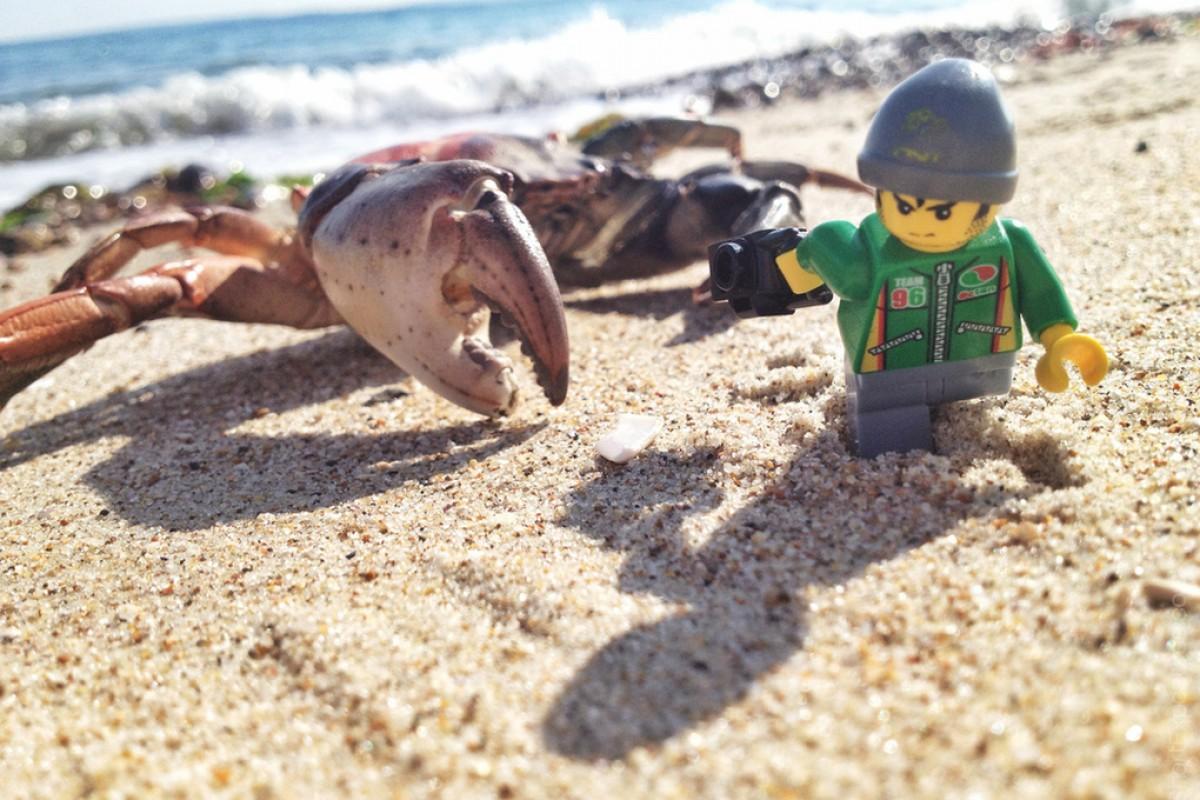Οι φωτογραφικές περιπέτειες ενός μικρού LEGO