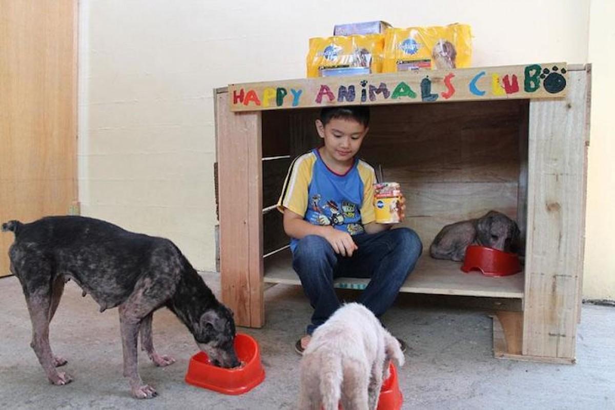 Ένα παιδί 9 χρονών δημιουργεί ένα καταφύγιο ζώων στο γκαράζ του