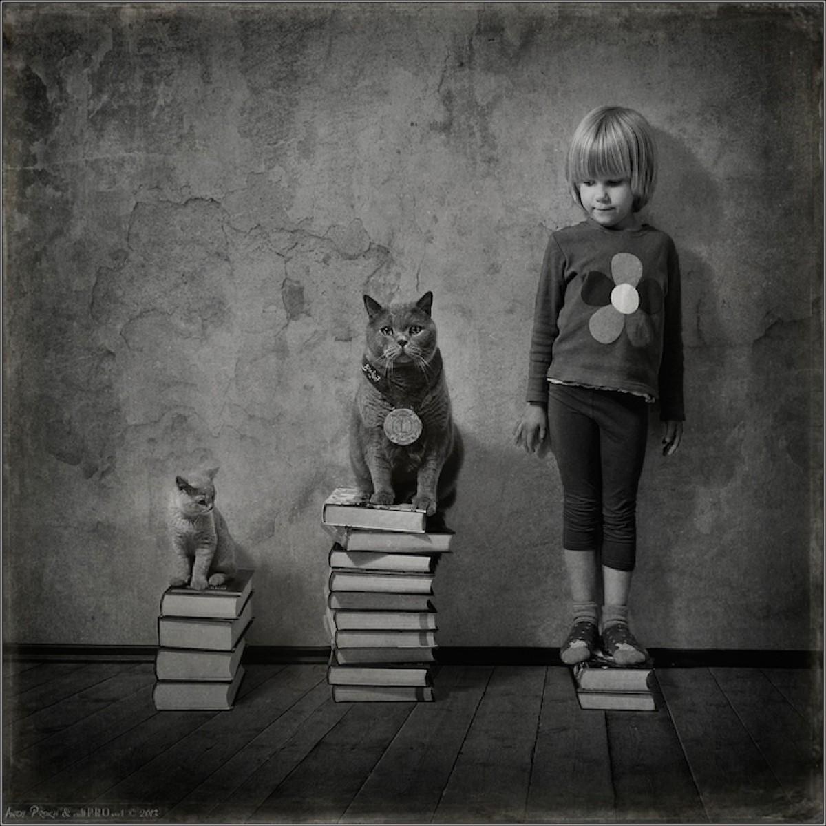 Ένα κοριτσάκι φωτογραφίζεται με τις γάτες της