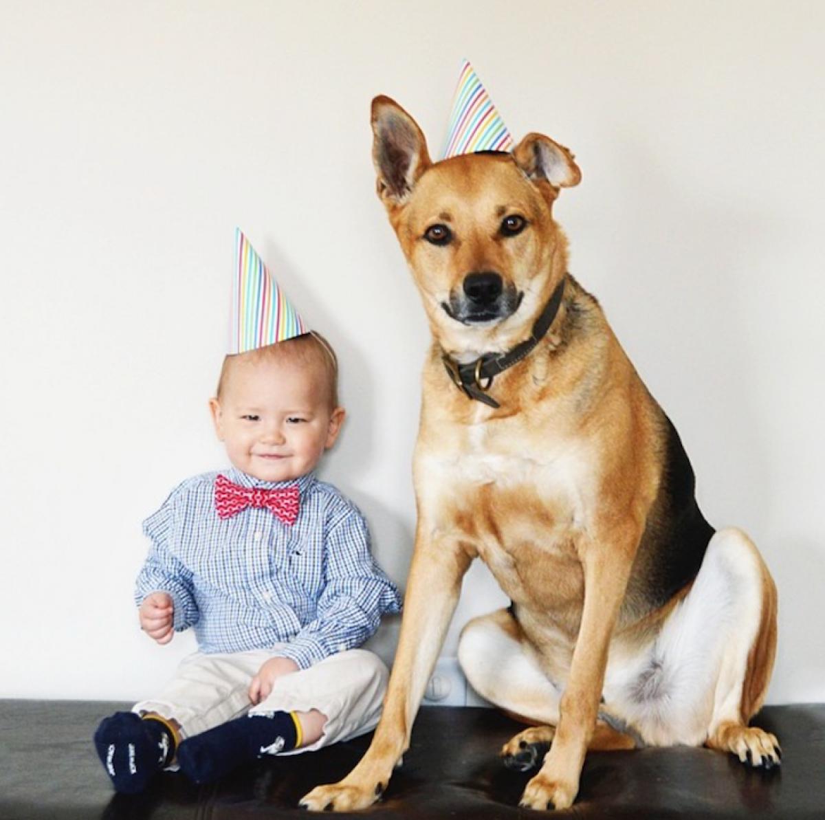 Θαυμάστε ένα γλυκό μικρούλη που φωτογραφίζεται μαζί με το σκύλο του