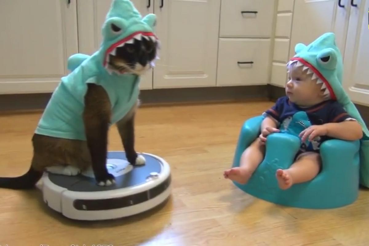 Το πιο τρελούτσικο, ξεκαρδιστικό βίντεο που θα δείτε σήμερα
