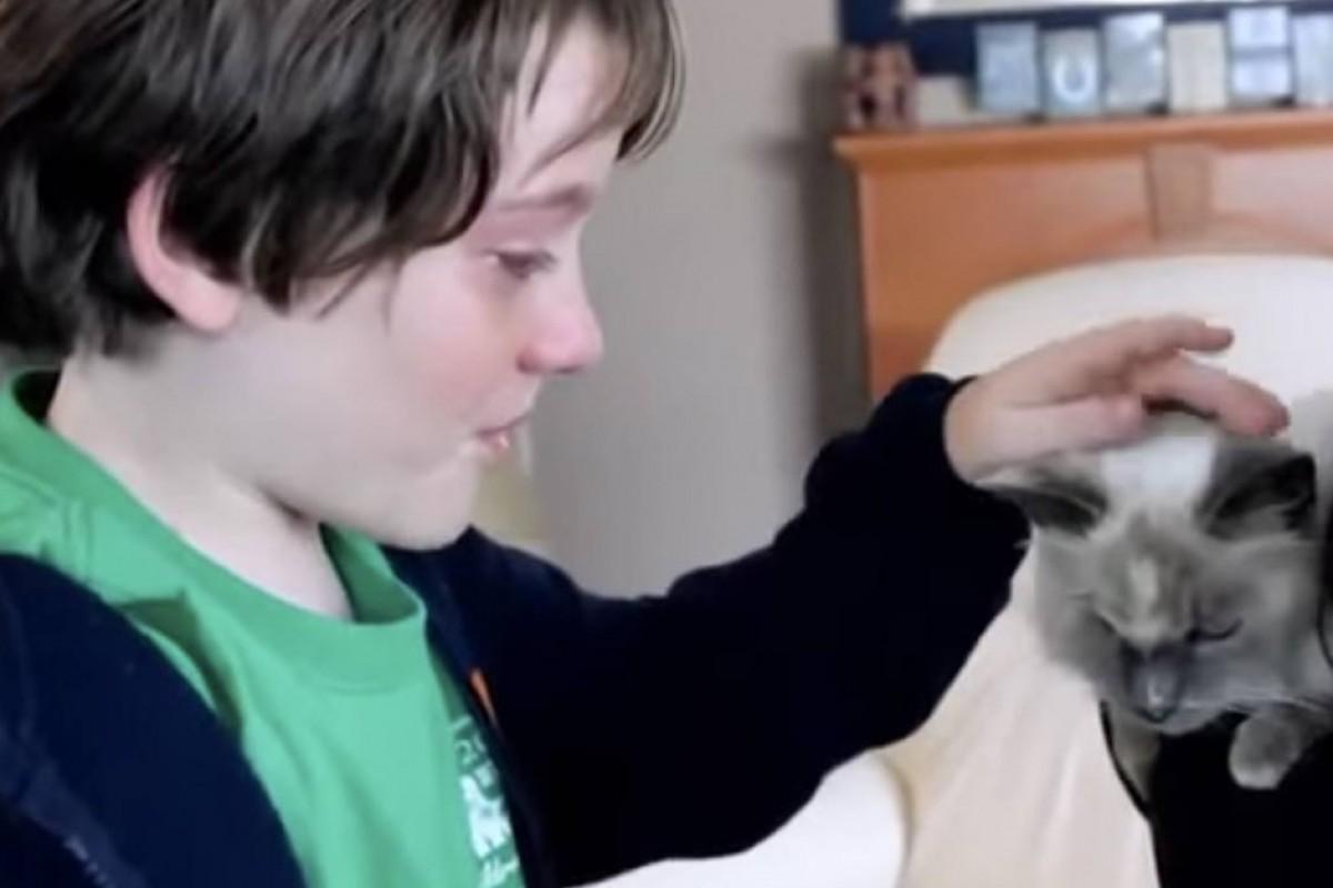 [Βίντεο] Μια μαμά βρίσκει και πάλι τη γάτα της οικογένειας. Δείτε τις αντιδράσεις τους!