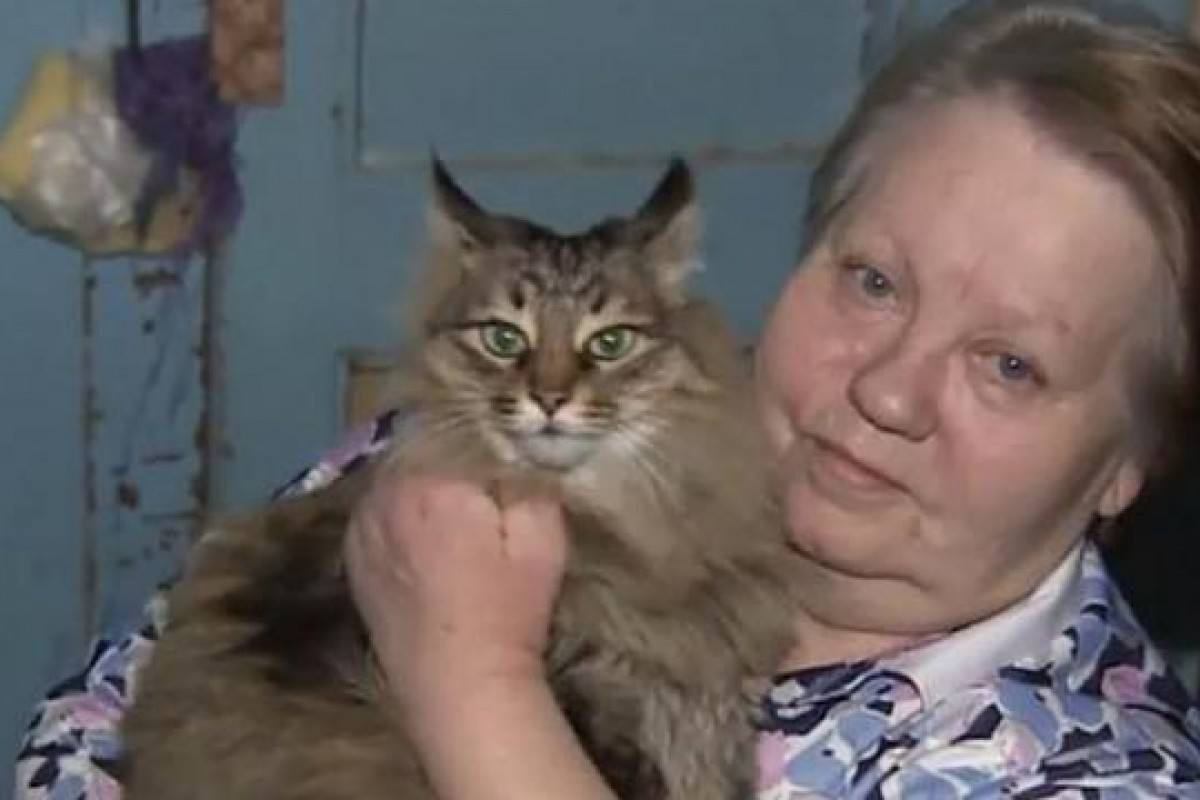 Η γάτα που έσωσε ένα μωρό απ' το κρύο