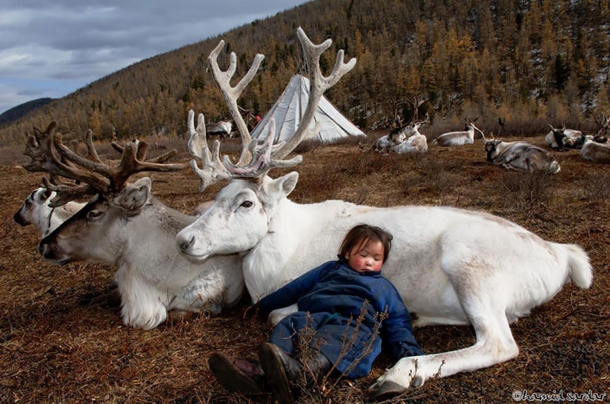[Φωτογραφίες] Οι οικογένειες που ζουν με τους ταράνδους στη Μογγολία