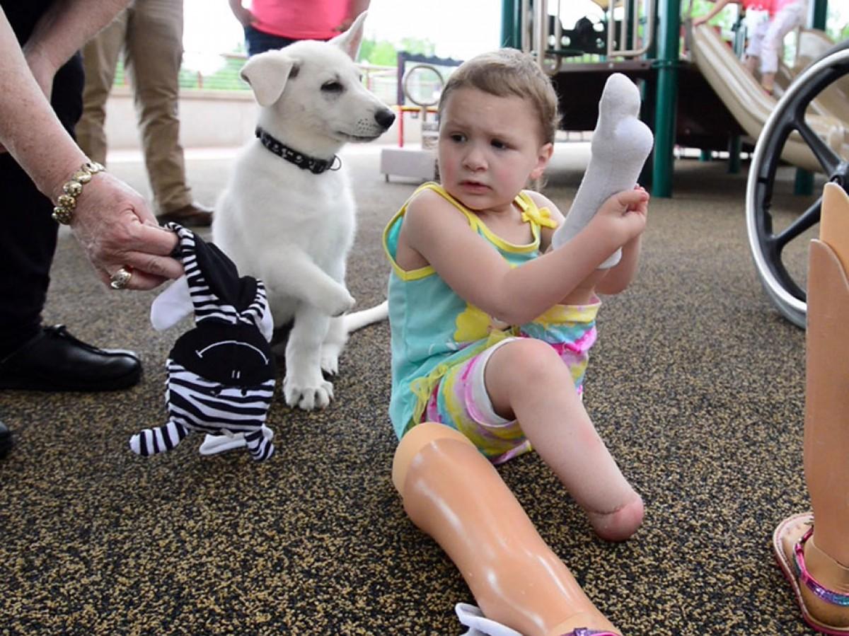 Ένα κορίτσι χωρίς πόδια βρίσκει τον ιδανικότερο φίλο: ένα σκυλάκι χωρίς πατούσες