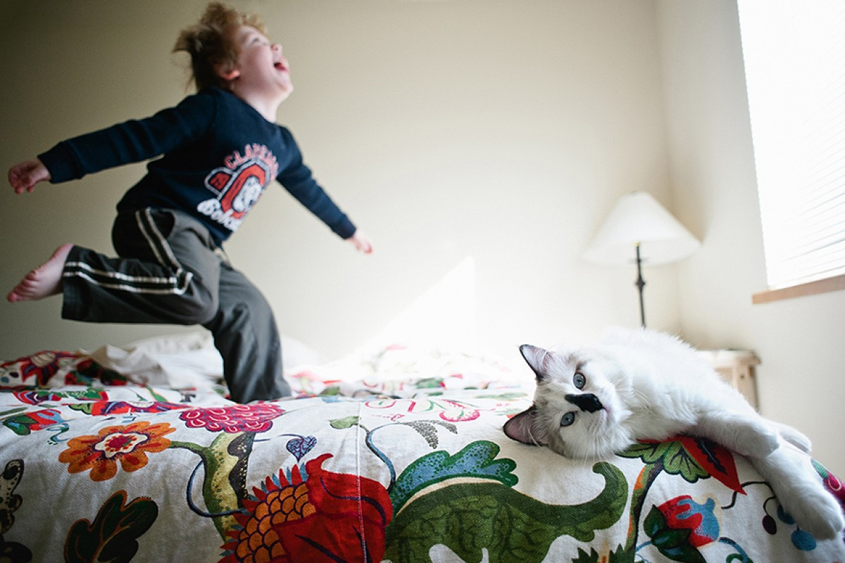 Τα αγόρια και οι γάτες τους: Ένα όμορφο οικογενειακό άλμπουμ