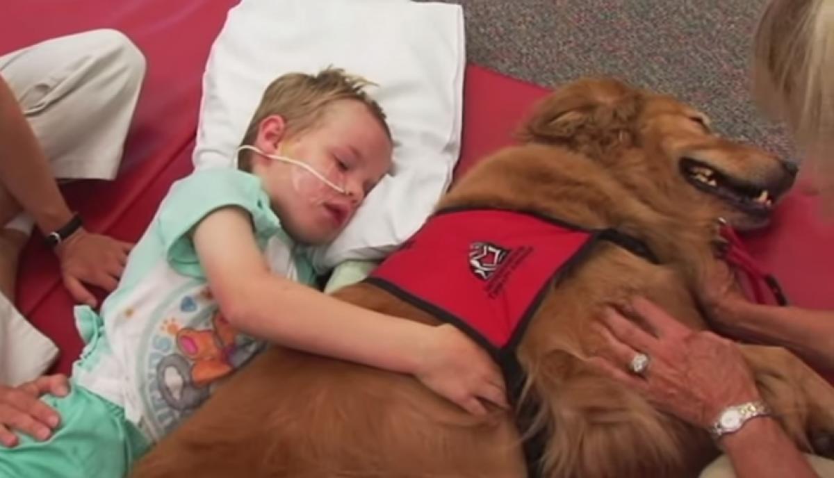Πώς ένας σκύλος βοήθησε αυτό το αγόρι να γίνει καλά