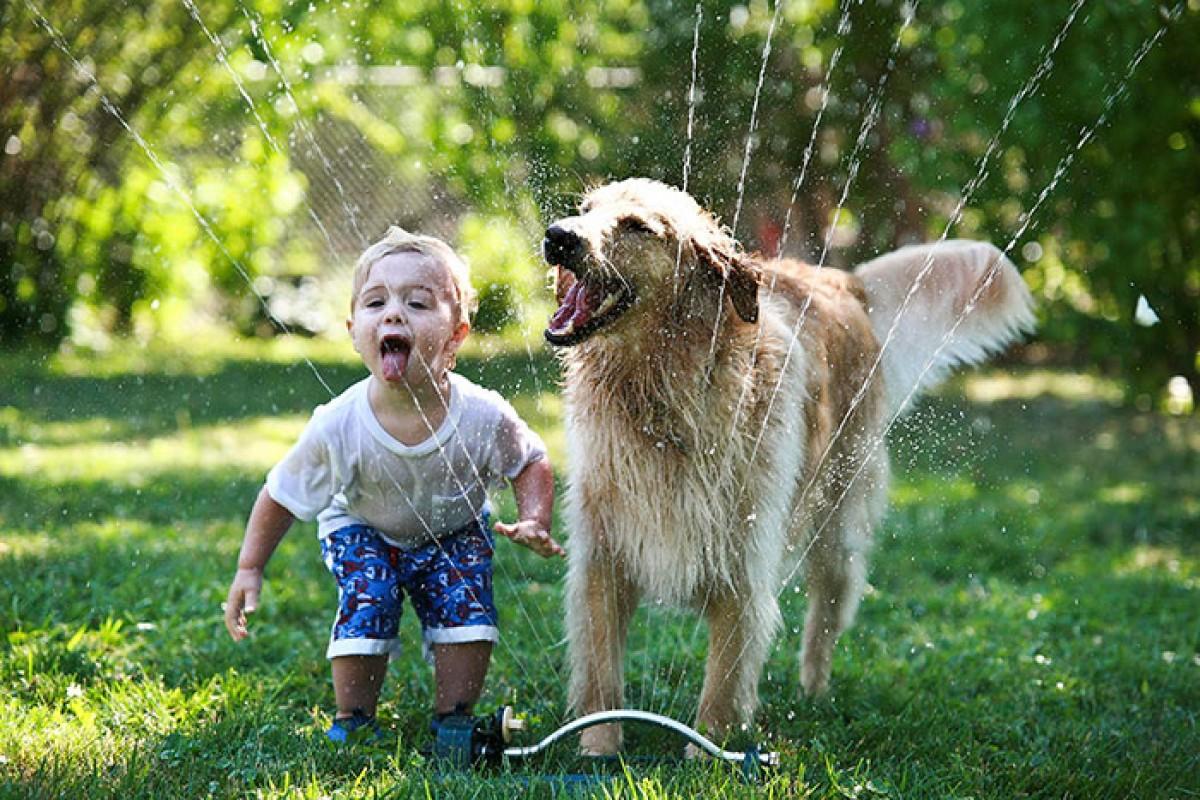 30 φωτογραφίες που θα σας πείσουν να πάρετε σκύλο