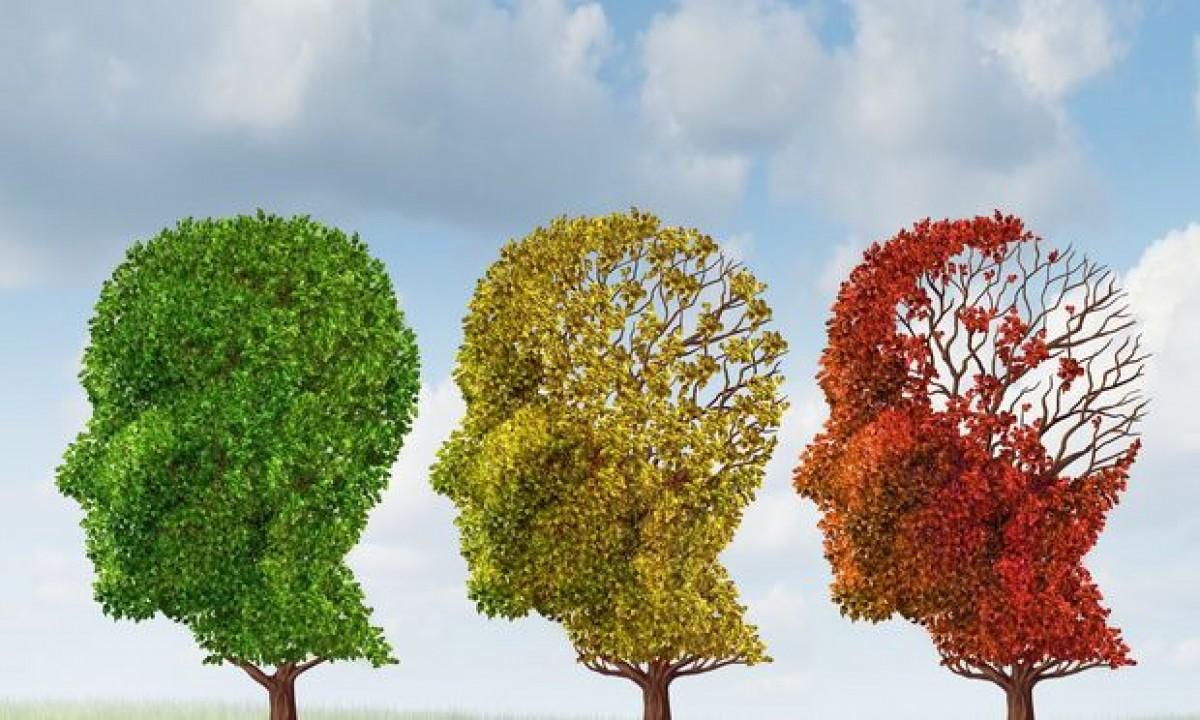 Πόσα γνωρίζετε για τη μνήμη και τις διαταραχές της; Κάντε το κουίζ!