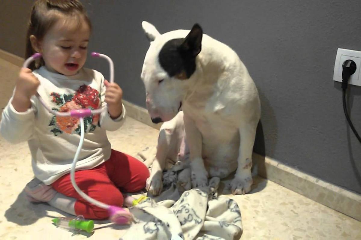 [Βίντεο] Κάποια εκπαιδεύεται για να γίνει γιατρός από πολύ μικρή