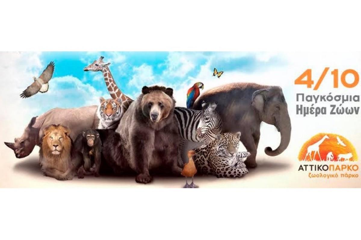 Το Αττικό Ζωολογικό Πάρκο γιορτάζει την Παγκόσμια Ημέρα των Ζώων