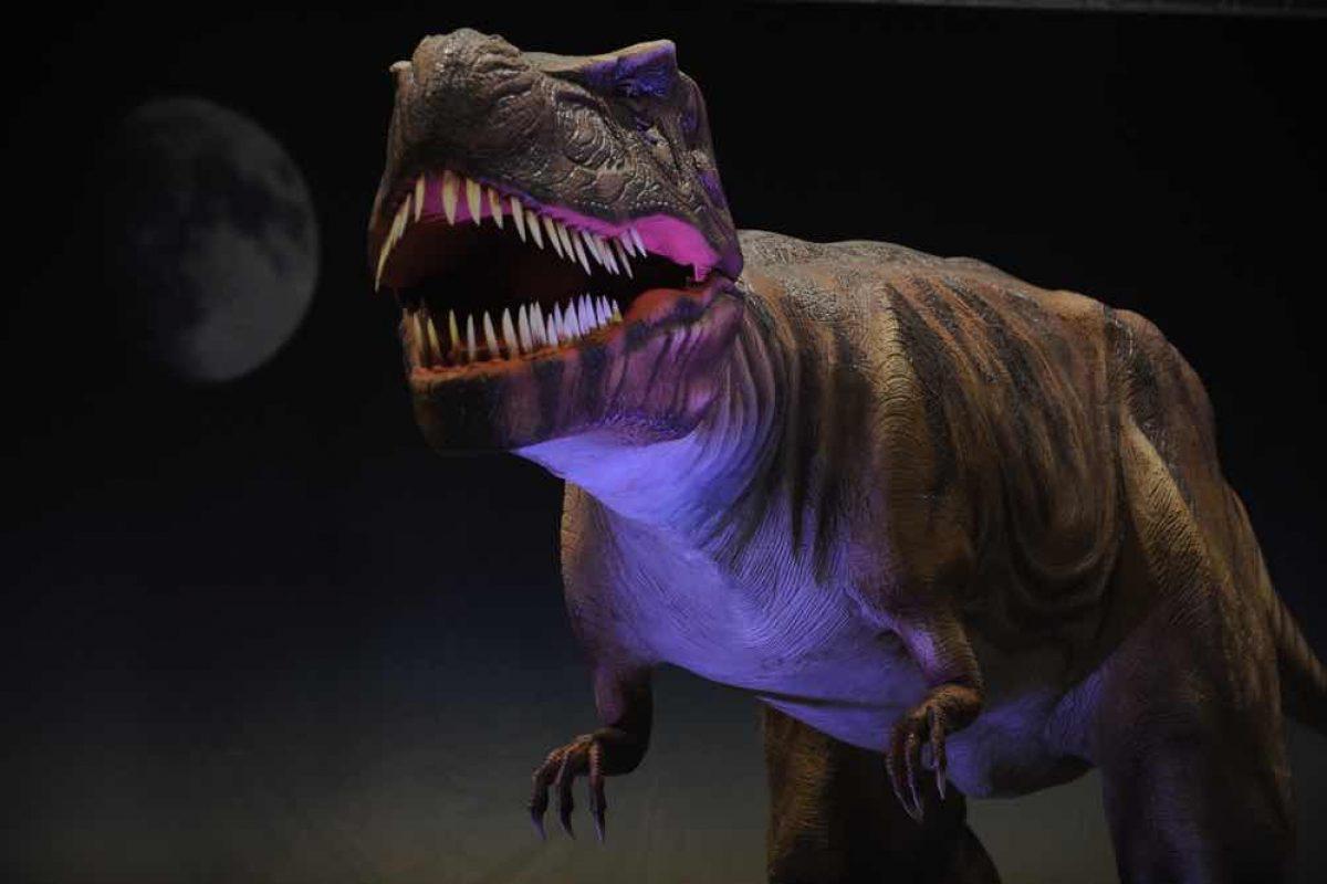 Στη Χώρα των Δεινοσαύρων   Νέα έκθεση στον Ελληνικό Κόσμο