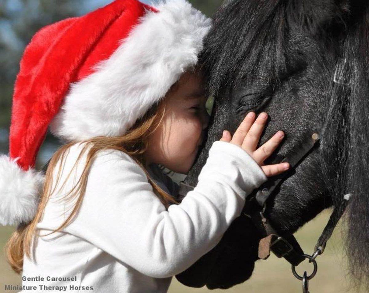 Ένα χριστουγεννιάτικο διήμερο με τα μαγικά αλογάκια του Gentle Carousel!