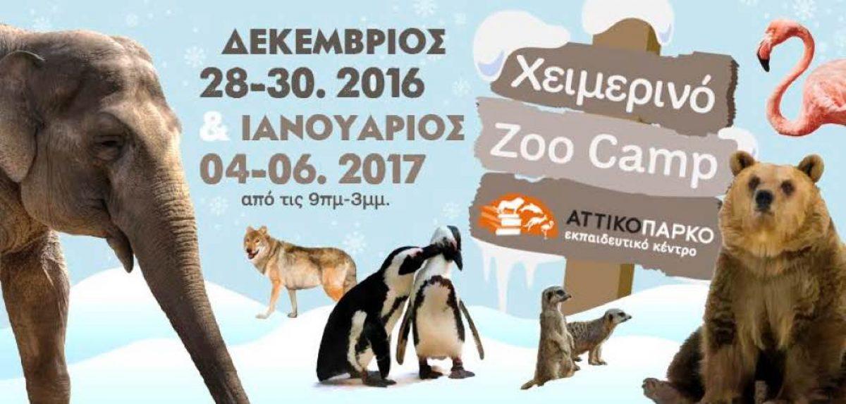 Χειμερινό Zoo Camp στο Αττικό Ζωολογικό Πάρκο!