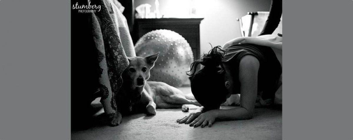 39 φωτογραφίες ζώων που στηρίζουν τους ιδιοκτήτες τους κατά τη διάρκεια της γέννας τους