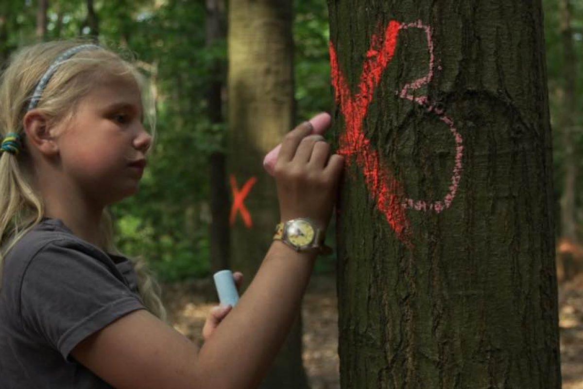KinderDocs   Φεστιβάλ ντοκιμαντέρ για παιδιά και νέους στο Μουσείο Μπενάκη