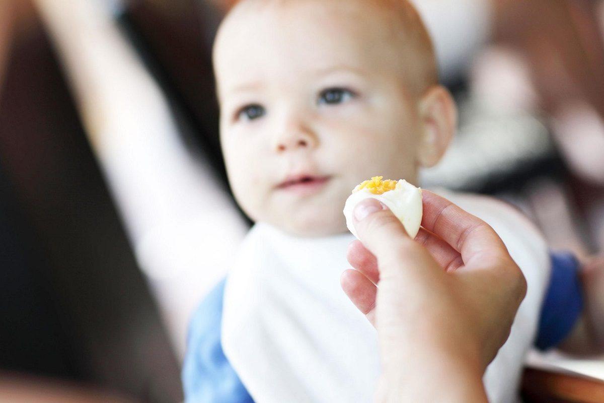 Το αβγό στη διατροφή του παιδιού