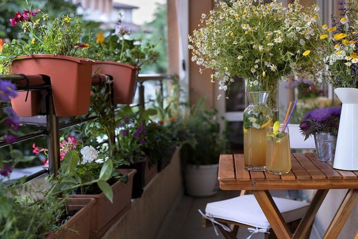7 Υπέροχα Μυρωδικά Φυτά για ένα Μπαλκόνι γεμάτο με Αρώματα!