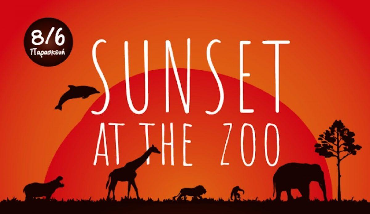 """Sunset at the Zoo"" στο Αττικό Ζωολογικό Πάρκο"