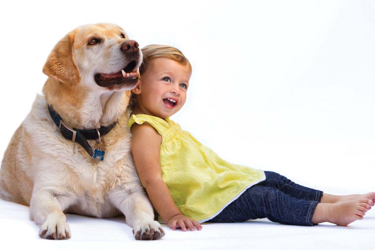 Ο σκύλος μας προστατεύει από την κατάθλιψη