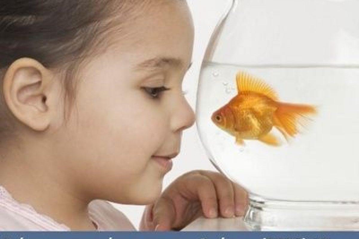 Γιατί τα παιδιά σήμερα έχουν μικρότερη διάρκεια συγκέντρωσης (και από τα χρυσόψαρα)
