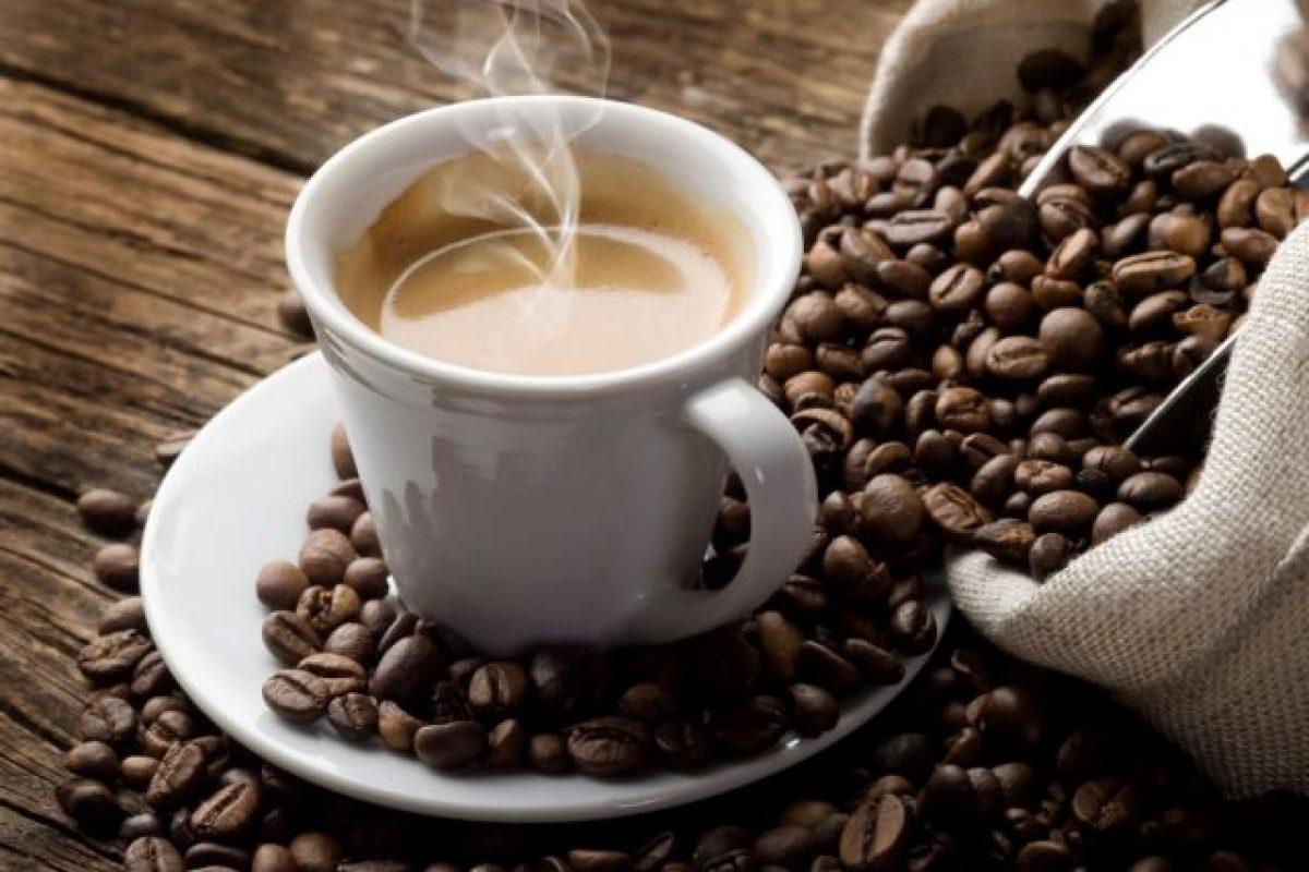 Θα μείνουμε χωρίς καφε; Τρία στα πέντε άγρια είδη απειλούνται