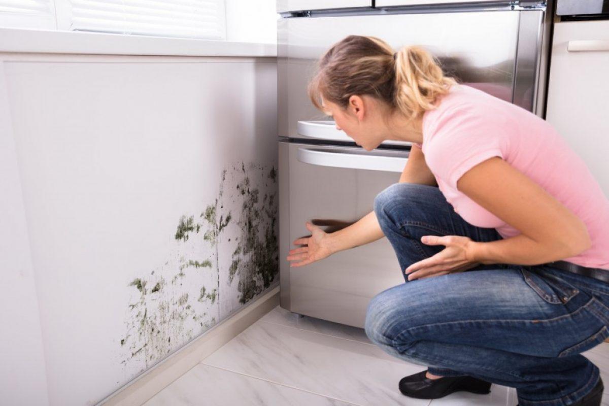 5 Αποτελεσματικοί τρόποι για να διώξεις τη μυρωδιά της μούχλας!