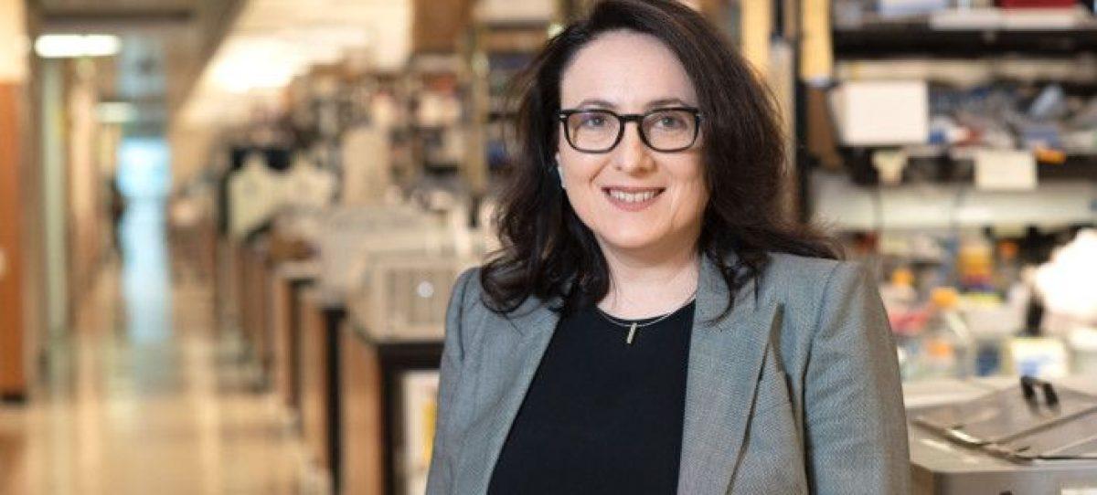 Κατερίνα Ακάσογλου: Η ερευνήτρια που κατάφερε να «φρενάρει» τη σκλήρυνση κατά πλάκας σε μελέτες