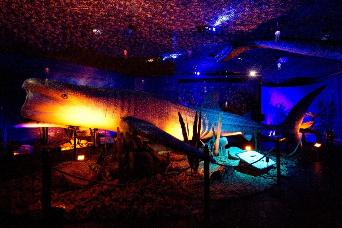 ΔΕΙΝΟΣΑΥΡΟΙ ΚΑΙ ΤΕΡΑΤΑ ΤΩΝ ΘΑΛΑΣΣΩΝ – Μια κατάδυση στον μαγικό κόσμο των Ωκεανών με δεινόσαυρους και προϊστορικά τέρατα