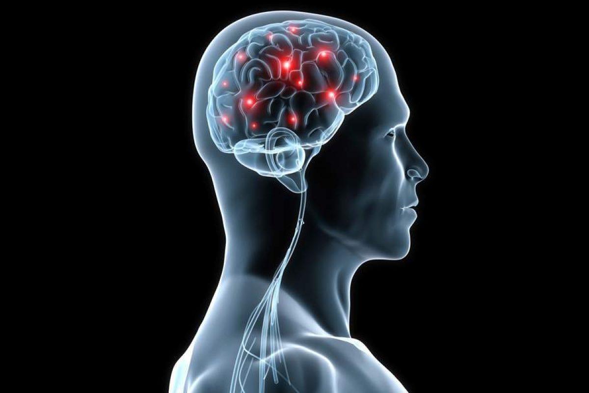 Ερευνα: Ο εγκέφαλος των γυναικών φαίνεται τρία χρόνια νεότερος σε σχέση με των ανδρών ίδιας ηλικίας
