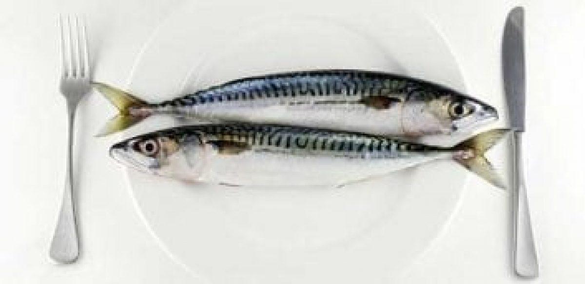 Γιατί η κατανάλωση ψαριών στην εγκυμοσύνη βοηθά στην ανάπτυξη του εγκεφάλου του μωρού.