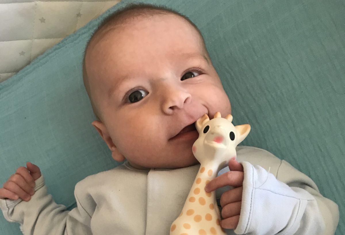 Σόφι η Καμηλοπάρδαλη: γιατί την αγαπάμε οικογενειακώς εδώ και 10 χρόνια