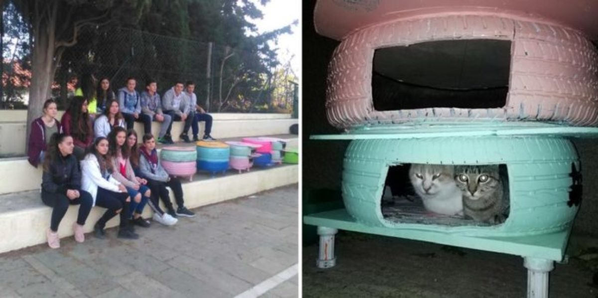 Μαθητές έφτιαξαν σπιτάκια από λάστιχα αυτοκινήτου για τις αδέσποτες γατούλες στην Λήμνο
