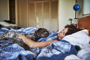 dog-in-bed-jpg-838x0_q80