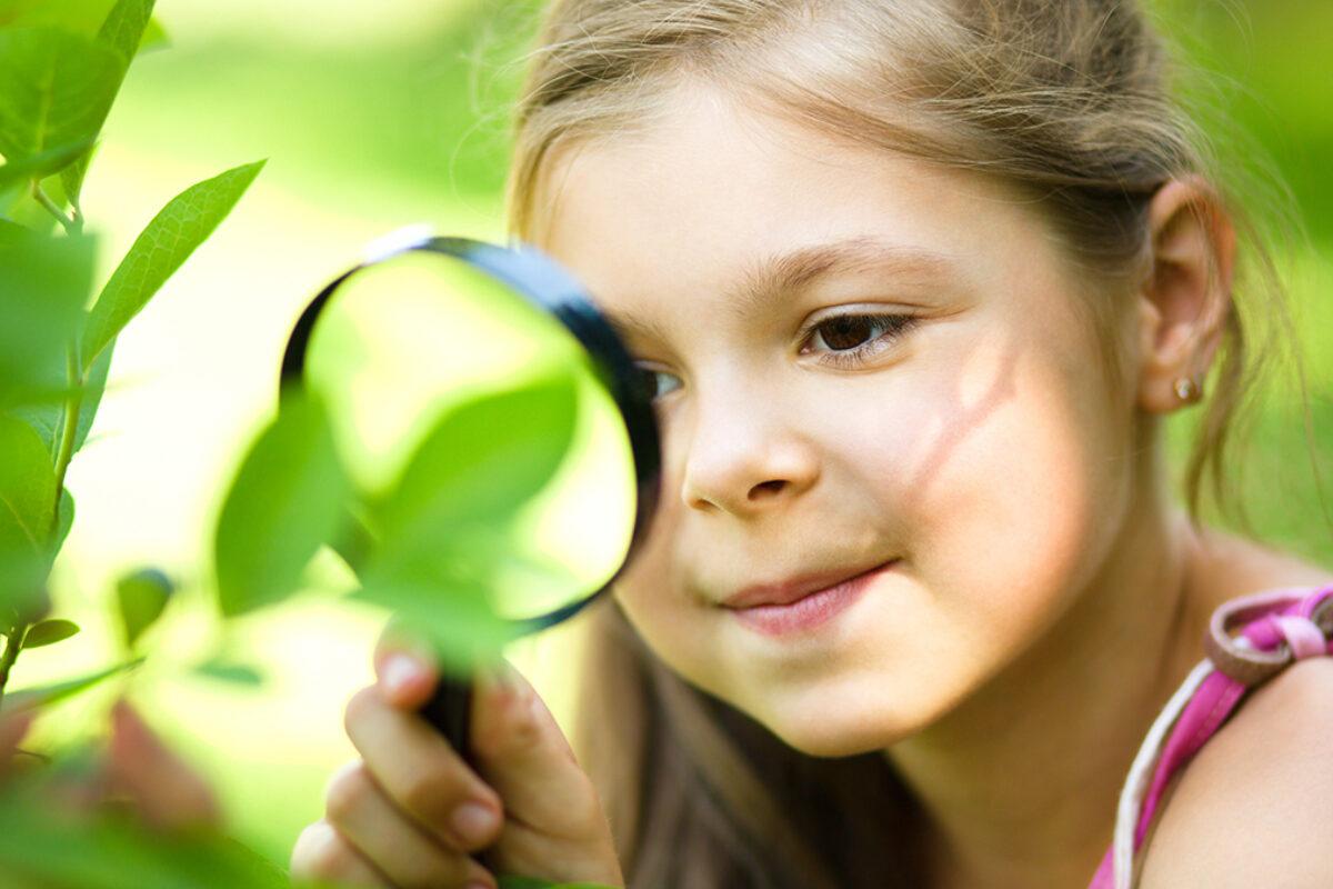 Ποιες δραστηριότητες βοηθούν το παιδί να αγαπήσει τη φύση;