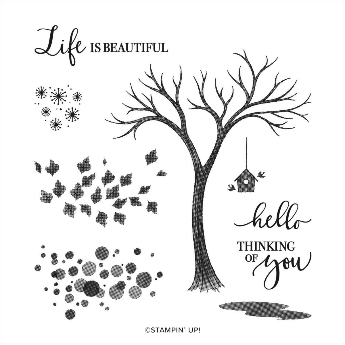 Η ζωή δεν είναι εύκολη αλλά είναι θαυμάσια