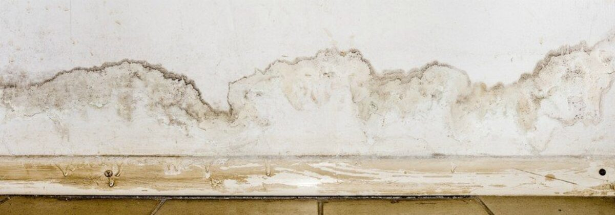 Γιατί ξεφλουδίζει ο τοίχος;