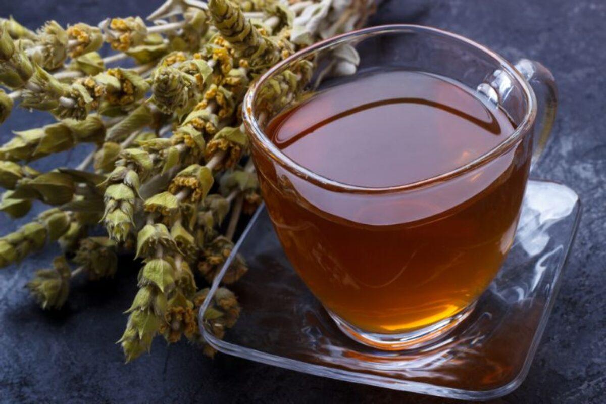 Τσάι του βουνού: Το παραδοσιακό αφέψημα με τα πολλαπλά οφέλη